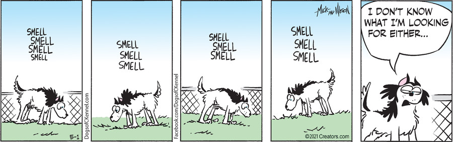 Dogs of C-Kennel for May 01, 2021