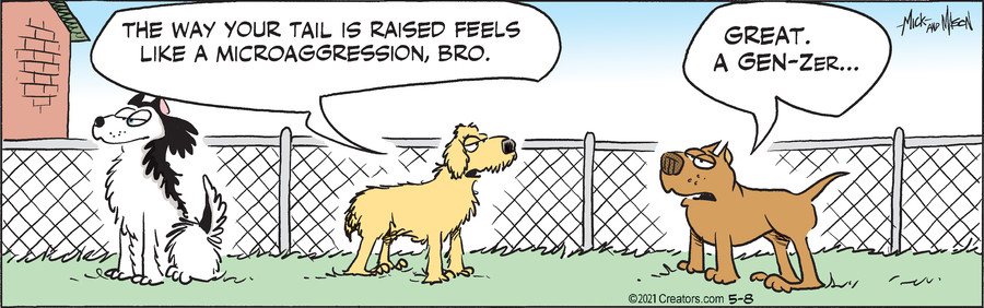 Dogs of C-Kennel for May 08, 2021