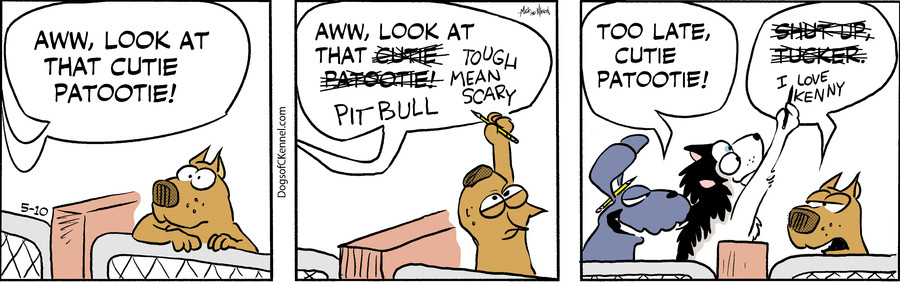 Dogs of C-Kennel for May 10, 2021