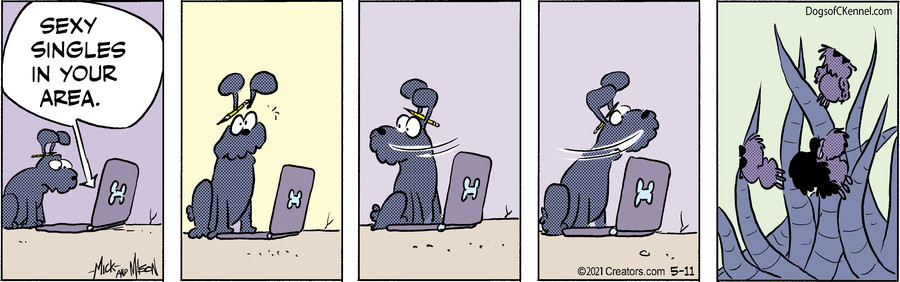 Dogs of C-Kennel for May 11, 2021